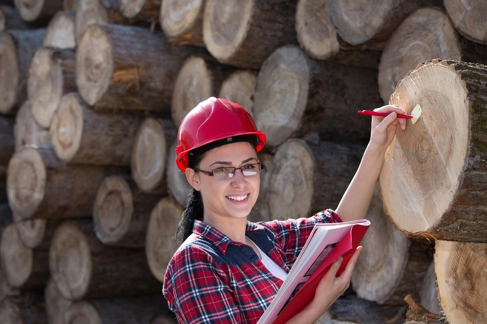 Image Result For Canada Us Softwood Lumber Dispute