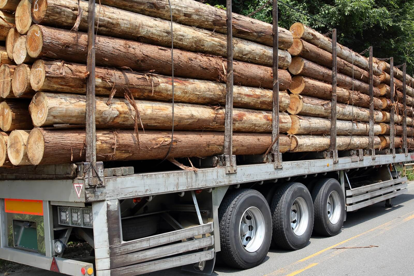 Timber trailer and stack of logs at a forest logging site